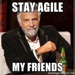 Agile Planning for Global Execution