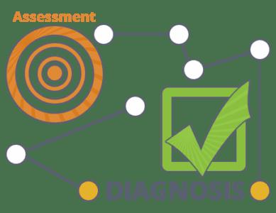 Diagnosing an Organization